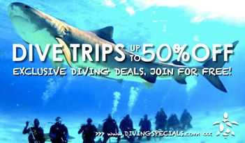 Link to http://www.divingspecials.com