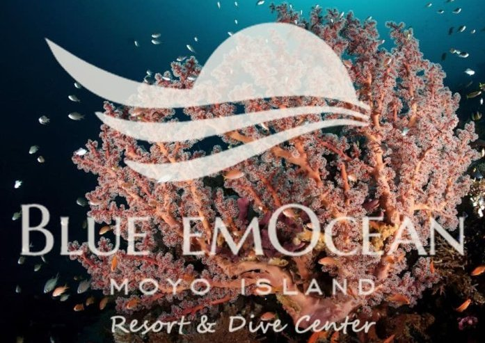 Cover Blue EmOcean Resort & Dive Center Diving & Resort