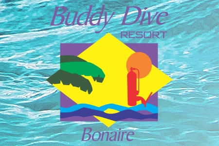buddy.dive