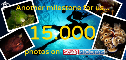 A 15000 photos in our database