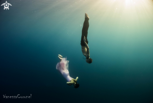 A free- freediving