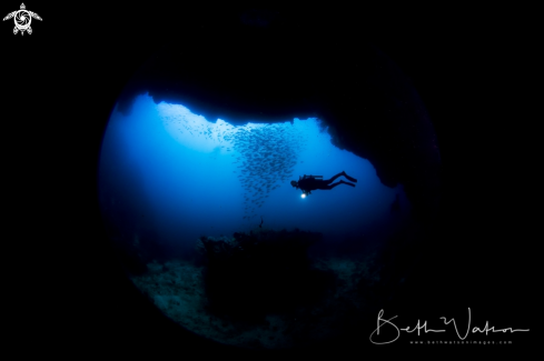 A Diver with light