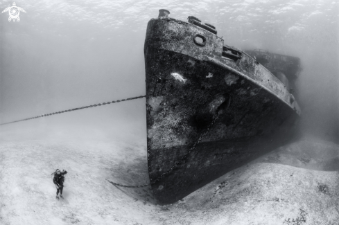A Wreck of the USS Kittiwake