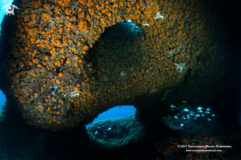 A Grotta dell'Isca - Arco naturale
