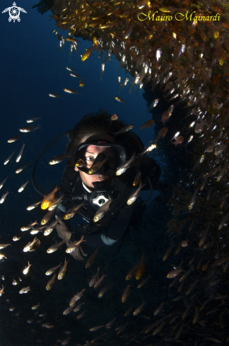 A Woman and glassfish
