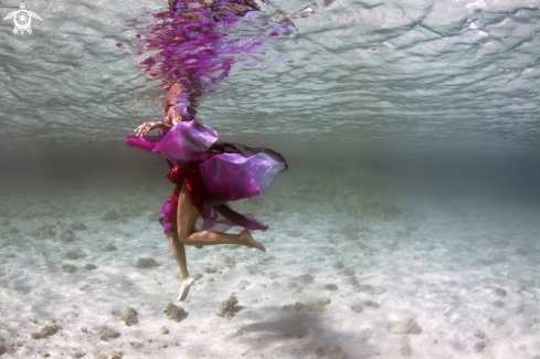 The Underwater Fashion Photo